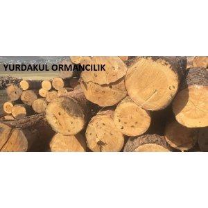 Yurdakul Ormancılık Kars Sarıkamış Orman Ürünleri